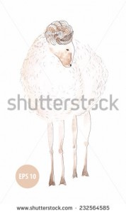 watercolor lamb, sign of new year 2015, painting animal